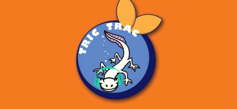 Tric Trac interview Blue Orange